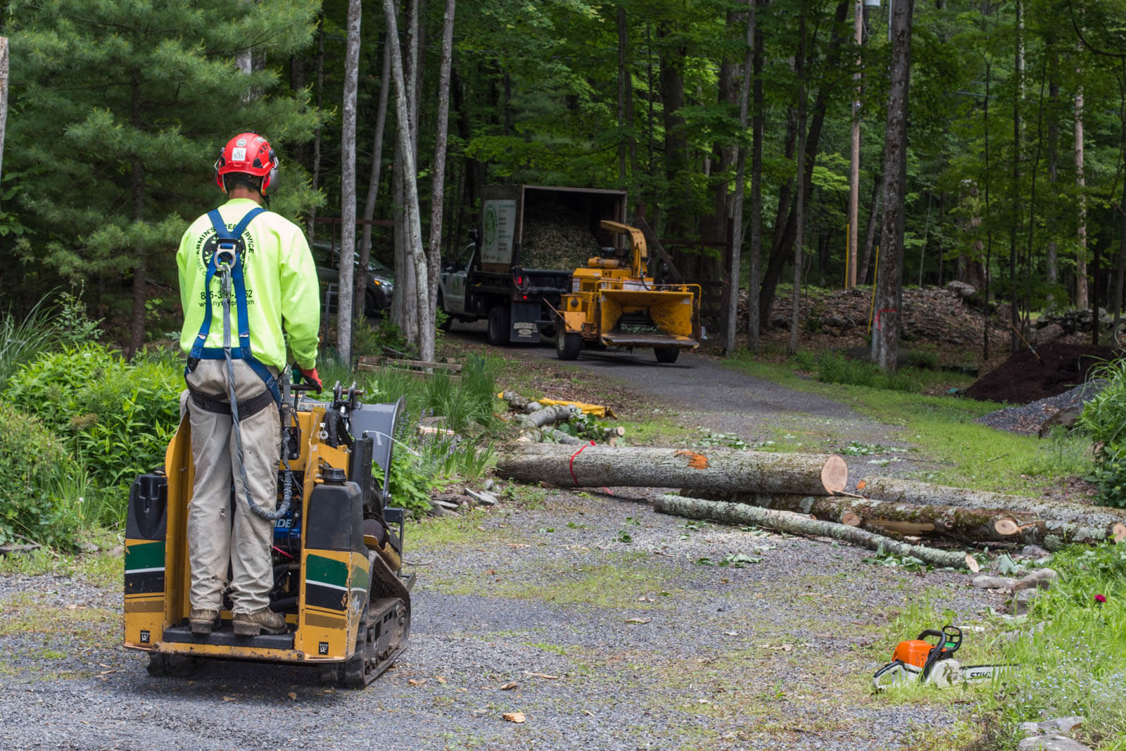 Emergency Tree Removal-Santee CA Tree Trimming and Stump Grinding Services-We Offer Tree Trimming Services, Tree Removal, Tree Pruning, Tree Cutting, Residential and Commercial Tree Trimming Services, Storm Damage, Emergency Tree Removal, Land Clearing, Tree Companies, Tree Care Service, Stump Grinding, and we're the Best Tree Trimming Company Near You Guaranteed!