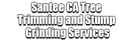Santee CA Tree Trimming and Stump Grinding Services Logo-We Offer Tree Trimming Services, Tree Removal, Tree Pruning, Tree Cutting, Residential and Commercial Tree Trimming Services, Storm Damage, Emergency Tree Removal, Land Clearing, Tree Companies, Tree Care Service, Stump Grinding, and we're the Best Tree Trimming Company Near You Guaranteed!