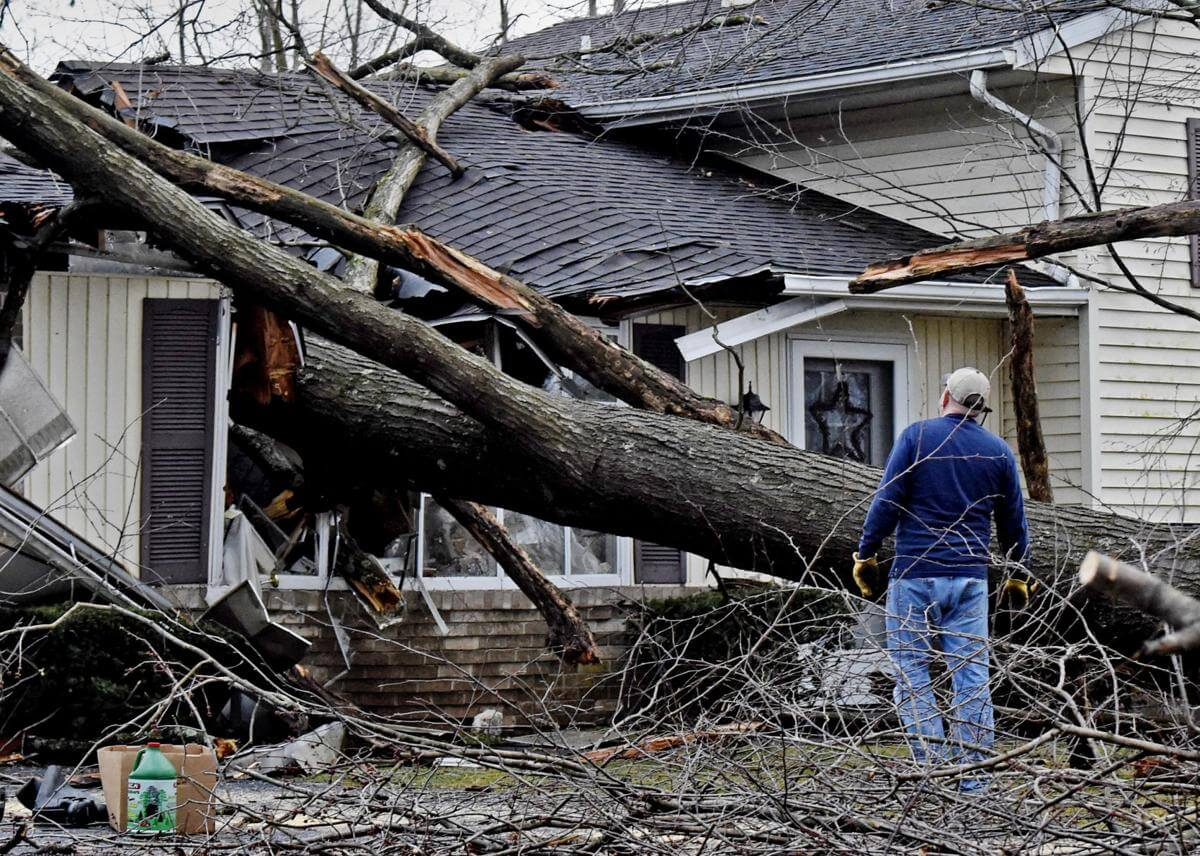 Storm Damage-Santee CA Tree Trimming and Stump Grinding Services-We Offer Tree Trimming Services, Tree Removal, Tree Pruning, Tree Cutting, Residential and Commercial Tree Trimming Services, Storm Damage, Emergency Tree Removal, Land Clearing, Tree Companies, Tree Care Service, Stump Grinding, and we're the Best Tree Trimming Company Near You Guaranteed!