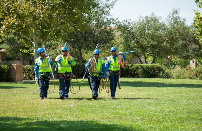 Winter Gardens-Santee CA Tree Trimming and Stump Grinding Services-We Offer Tree Trimming Services, Tree Removal, Tree Pruning, Tree Cutting, Residential and Commercial Tree Trimming Services, Storm Damage, Emergency Tree Removal, Land Clearing, Tree Companies, Tree Care Service, Stump Grinding, and we're the Best Tree Trimming Company Near You Guaranteed!